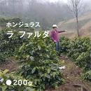 ホンジュラス ラ ファルダ / 浅煎り (High Roast)