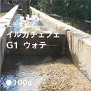 エチオピア イルガチェフェ G1 ウォテ