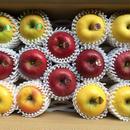 岩手イーハトーブのりんご農園から。希少種から高級品種まで詰め合わせてお届け(3〜7種類) 5Kg
