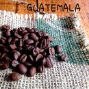 グアテマラ アンティグア・メディナ農園 深煎り 200g