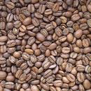 自家焙煎コーヒー豆 ボリビア リオ・コリ農園産 ミディアムロースト