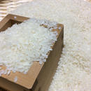 お米(コシヒカリ) 10キロ