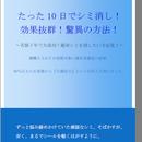 シミ消し成功研究レポート 《パソコン、タブレットPC、比較的新しいスマートフォン用 ダウンロード形式(PDFファイル) 》A5 24ページ  のコピー