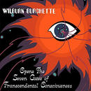 MASTER WILBURN BURCHETTE / OPENS THE SEVEN GATES OF TRANSCEDENTAL CONSCIOUSNESS (CD)
