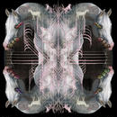 EARTHEATER / RIP CHRYSALIS (CD)