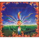 Esteban Sehinkman / pajaro de fuego trance (CD)