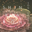 4th Single「SHINKARON」