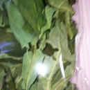 パパイヤの葉10g