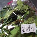 苺の葉5g