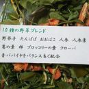 お野草ブレンド10g