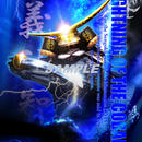 Lightning of the cobalt -正宗-    4切ワイド額入りHG