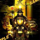 Japanese warrior SAMURAI 天下人-秀吉- 4切ワイド額入り HG