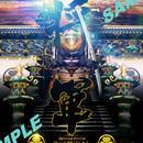 Japanese warrior SAMURAI 将軍-家康- 4切ワイド額入り HG