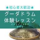 <2月28日>関西  グーダドラム体験レッスン  (音階:イークィノックス クラス)