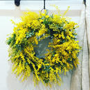 ミモザ・リース/ Lサイズ【wreath】