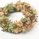 Autumn dry wreath - あじさい【 Chic & Harvest series 】