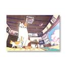 ポストカード #01