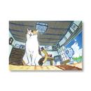 ポストカード #02