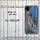 AQUOSシリーズ ワニ スマホケース ハードタイプ (品番caq-043)
