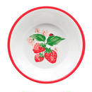 Wild Strawberry Meramine Bowl