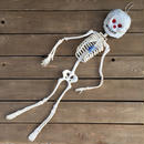 HORROR TOY Giant Rubber Skeleton/ホラートイ ジャイアント ラバー スケルトン/170304-4