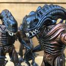 ALIENS Scorpion Alien Figure/エイリアン スコーピオン・エイリアン フィギュア/171012-11
