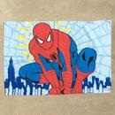 SPIDER-MAN Pillow Case/スパイダーマン 枕カバー/180326-2