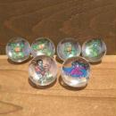 TURTLES Rad Rollers Set/タートルズ ラッドローラーズ セット/190207-15