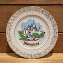 Disney Disneyland Plate/ディズニー ディズニーランド プレート/190209-5