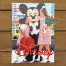 Disney The Disney Catalog 1996 Valentaines/ディズニー カタログ 1996年バレンタイン号/190218-6
