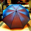 傘専門店  通販  東京  雨傘  ワンタッチ  ジャンプ  サビにくい  黒骨  旅傘  【廃盤   タマムシ Blue】