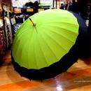 60㎝ 傘専門店 通販 東京 メンズ レディース 雨傘 サビにくい 旅傘【蛇の目 24本骨 若草】