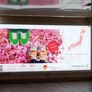 【航空会社】エバー航空(長榮航空)岡山、仙台便プロモーション事業
