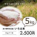 高千穂秋元のお米『いろは米』5kg ※白米・玄米選べます