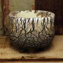 Pottery by Wood φ12.5cm タイポット P1