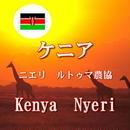 ケニア ニエリ ルトゥマ農協 中深煎り 100g