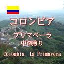 コロンビア プリマベーラ 中深煎り 100g