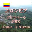 コロンビア プリマベーラ 中煎り 100g
