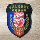 中国人民解放軍 海軍特種部隊 蛟龍(みずち)突撃隊 部隊章