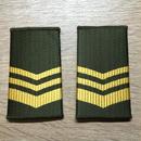 【コレクター商品】中国人民解放軍97式 陸軍 筒式肩章 中士