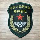 中国人民解放軍 15式 陸軍 特種部隊 部隊章