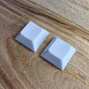 DSA PBT Keycap (2Piece/White)