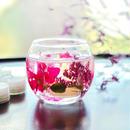 秋色ラズベリーflowersキャンドルホルダー&ティーライトキャンドル8個セット