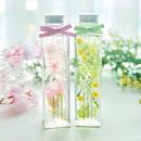 2本セット〜ミモザと桜のお庭~春のハーバリウム〜 Mサイズ
