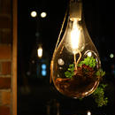 BOTANIC HANGING LIGHT M-FGD