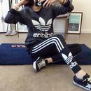 アディダスジャージレギンス  運動パンツ adidas  レディース 2560