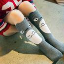 Kids ソックス 靴下 (1~3歳・4~6歳)