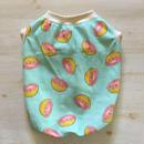 《ピンクグレープフルーツ》タンク//水色