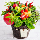 おしゃれなヘルシーギフト・そのまま飾れる野菜ブーケ(クール便送料無料)【※こちらからの発送日が1月25〜27日の限定商品になります】