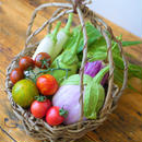 めずらしい夏野菜の籠ギフト(お中元・ギフト)【限定販売】